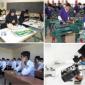 سامانه هدایت شغلی تحصیلی در مدارس